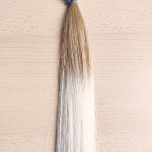 Ombre Extensions